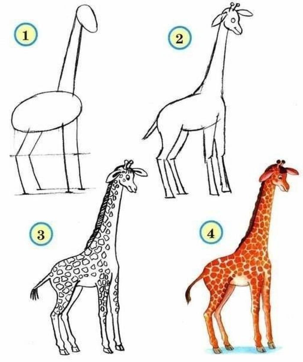 Bien connu 10 tutoriels photos pour apprendre à dessiner les animaux! - Trucs  GM34
