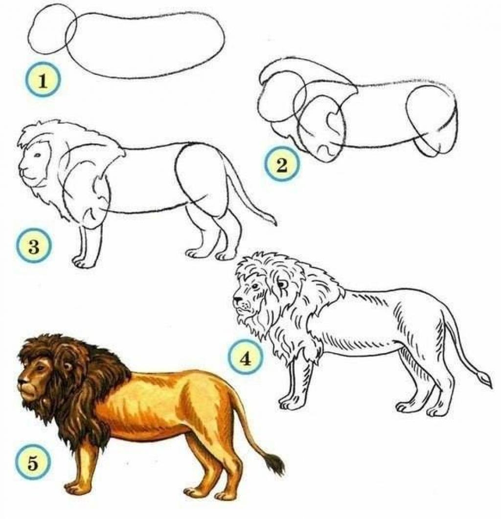 Célèbre 10 tutoriels photos pour apprendre à dessiner les animaux! - Trucs  HJ62
