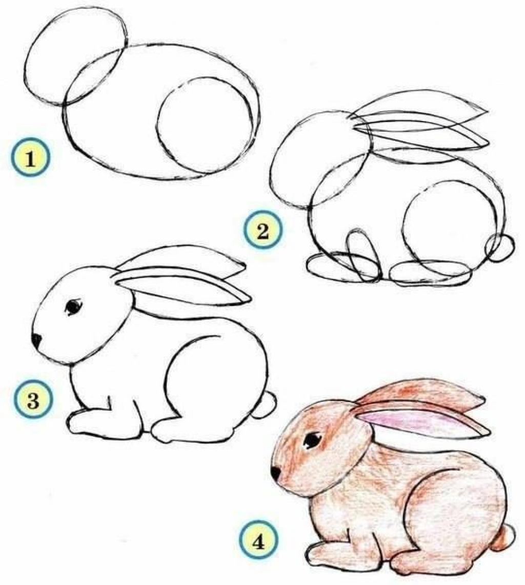 Connu 10 tutoriels photos pour apprendre à dessiner les animaux! - Trucs  SA92