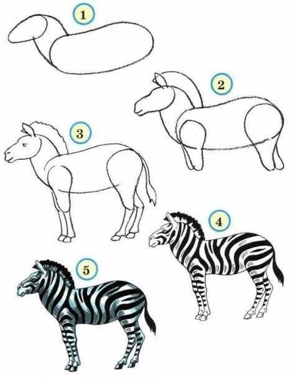 Assez 10 tutoriels photos pour apprendre à dessiner les animaux! - Trucs  FQ96