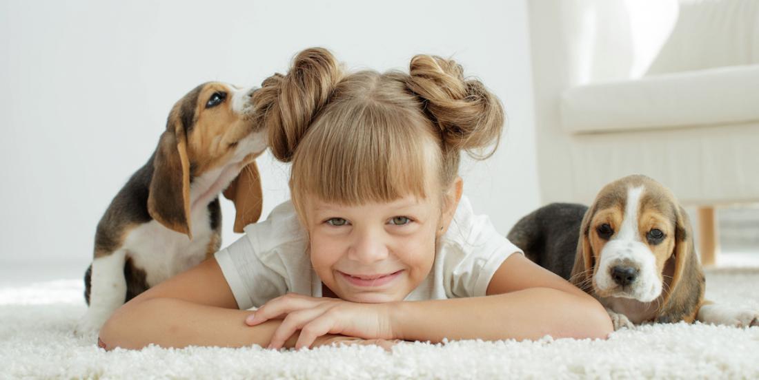 Vous songez à adopter un chien? Voici les 10 pitous qui aiment le plus les enfants!