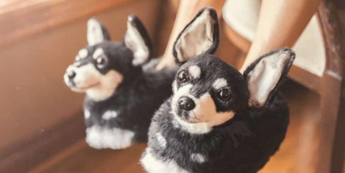 Vous pouvez maintenant commander des pantoufles à l'effigie de votre animal de compagnie