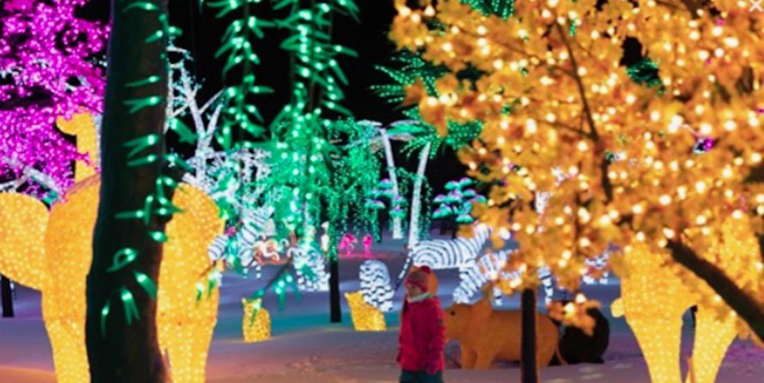 Pour les Fêtes, le plus grand village illuminé du monde s'installera à Laval