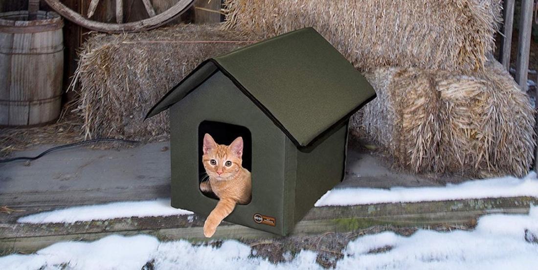 Saviez-vous qu'il est possible d'acheter une maison chauffante pour abriter les chats cet hiver?
