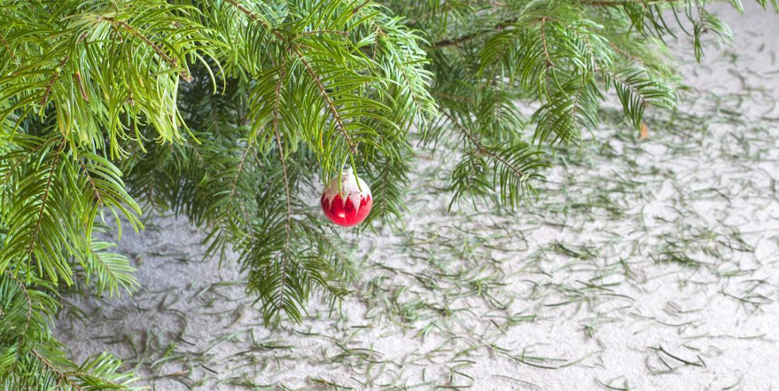 Selon une tradition ancienne, vous ne devriez pas défaire votre sapin de Noël avant une date précise