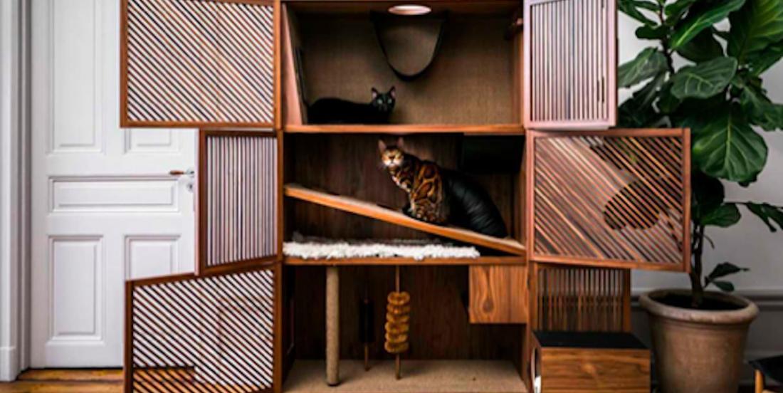 Des accessoires pour chats qui plairont à votre petit compagnon tout en s'accordant à votre décor