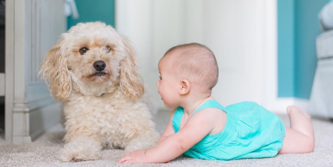 Bien-être de bébé: voici pourquoi il est tellement important de laisser un poupon sur le sol