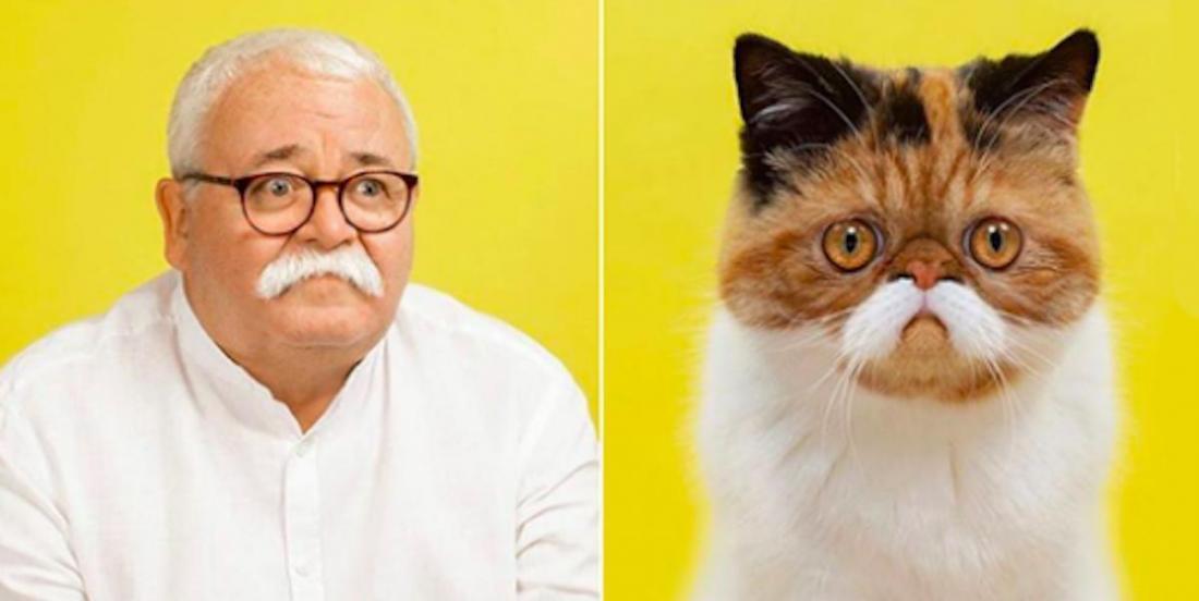 Un photographe met en vedette des animaux avec leurs sosies humains!