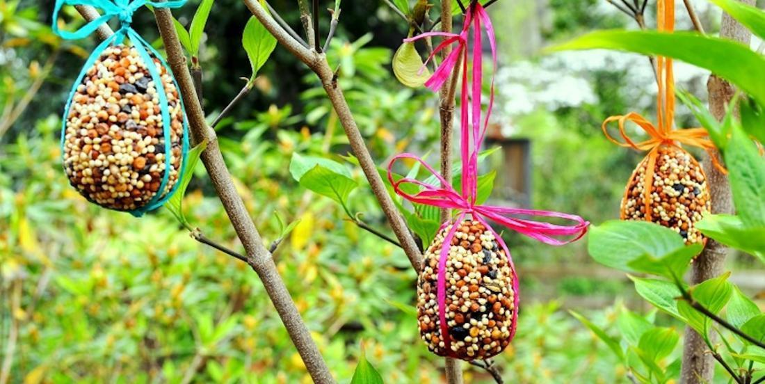 Comment fabriquer des ornements de graines pour oiseaux en forme de coco
