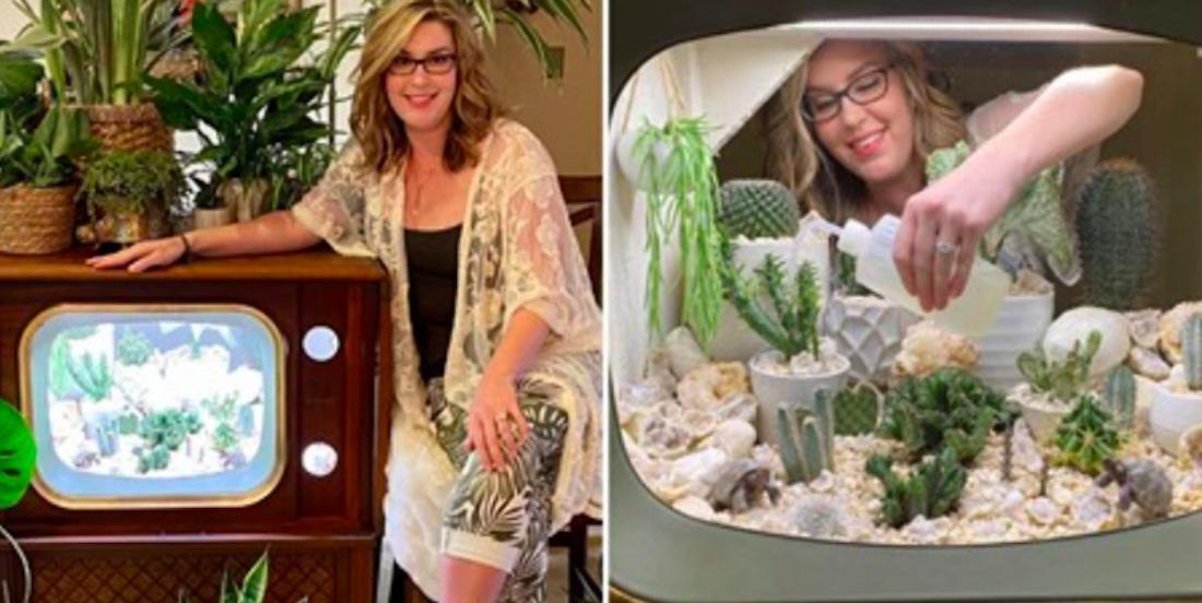 Avec 150 plantes et une télé vintage, elle crée un terrarium impressionnant