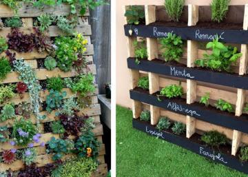 Vous êtes prêt à faire votre jardin à la verticale à partir d'une palette de bois? Ho la... pas si vite! Vous devez d'abord savoir ceci!