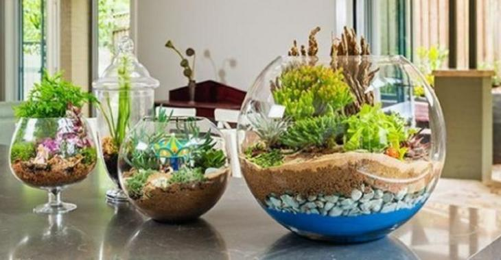 Comment monter un terrarium! Les étapes et des modèles pour vous inspirer!