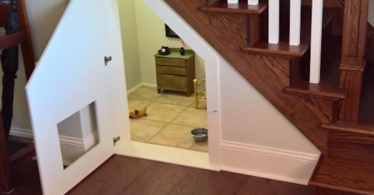 Ce chien a sa propre petite chambre à coucher sous l'escalier