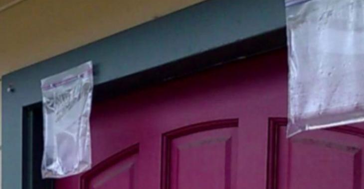 Pourquoi on devrait tous suspendre des sacs d'eau devant la porte de notre maison