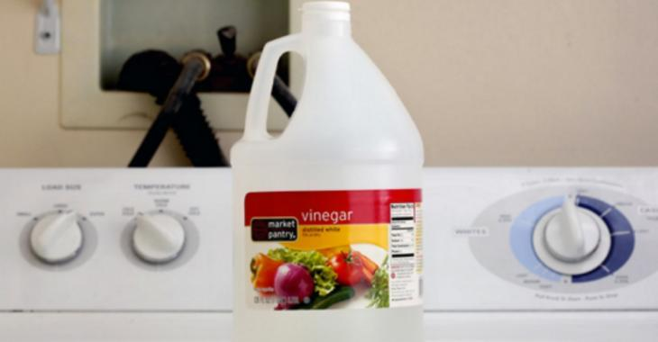5 choses qui se produisent lorsque vous ajoutez du vinaigre à votre lessive
