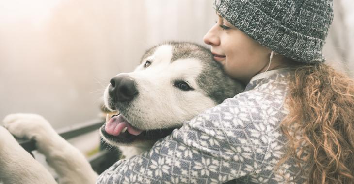 11 façons qu'a votre chien de vous dire «je t'aime»
