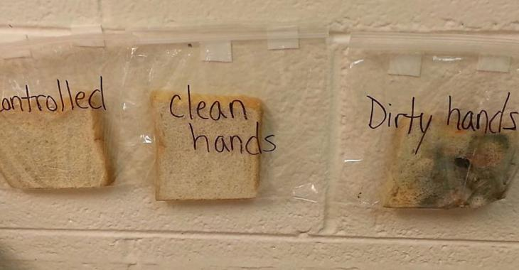 Avec 3 tranches de pain, une enseignante donne une leçon à ses élèves, qui ne l'oublieront jamais...