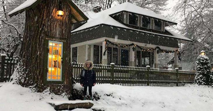 Une femme crée une bibliothèque féerique dans un arbre mort