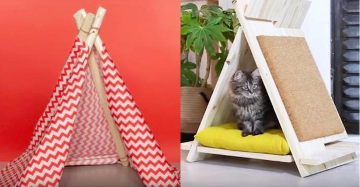 Voici comment fabriquer un beau tipi pour votre chat