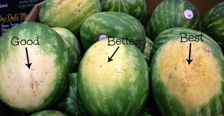 Comment choisir le melon d'eau parfait