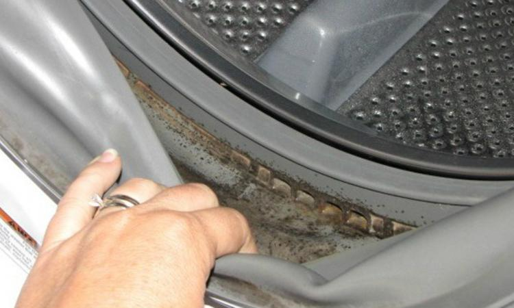beautiful mauvaise odeur machine a laver #2: shiva un lave-linge