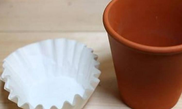 Quand vous planterez vos fleurs en pot, n'oubliez pas d'utiliser des filtres à café!